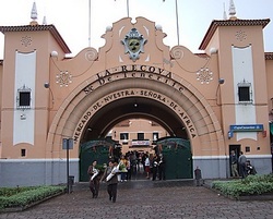 Рынок Богоматери Африки, Тенерифе
