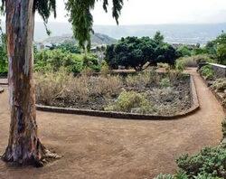 парк таоро, тенерифе