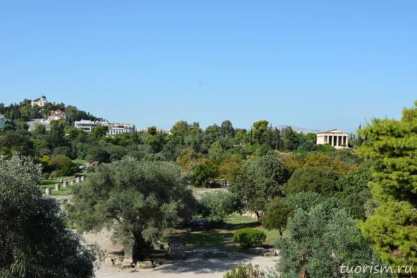 греческая агора, Афины, оливковые деревья, лето