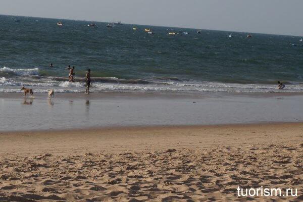 Гоа, море, пляж