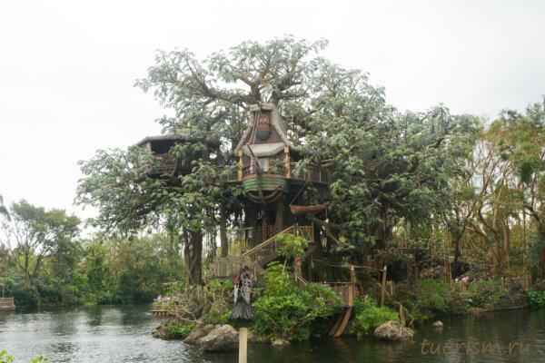 дом Тарзана, дом на дереве, Страна приключений, Диснейленд, Гонконг, Tarzan's treehouse, Adventureland, Disneyland, Hong Kong